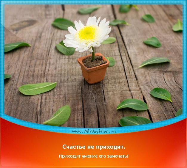 позитивчик дня: Счастье не приходит. Приходит умение его замечать