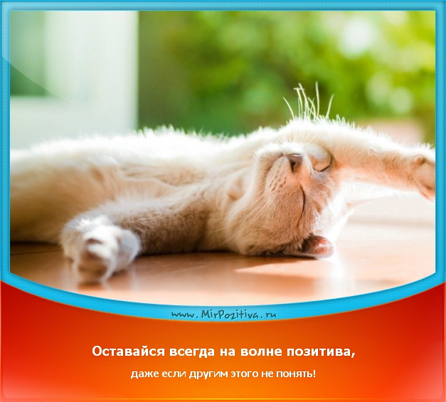 позитивчик дня: Оставайся всегда на волне позитива, даже если другим этого не понять!
