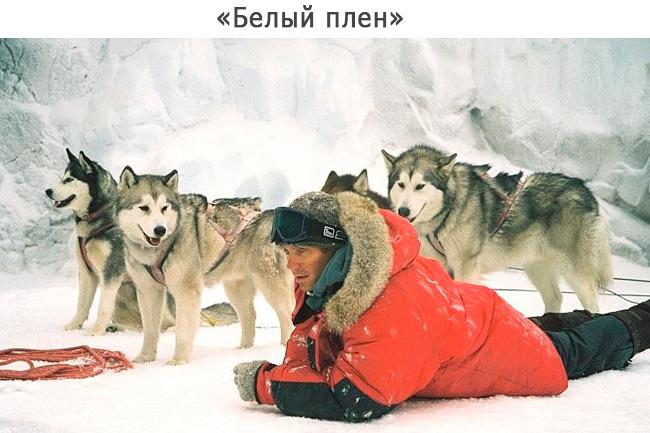 «Белый плен»