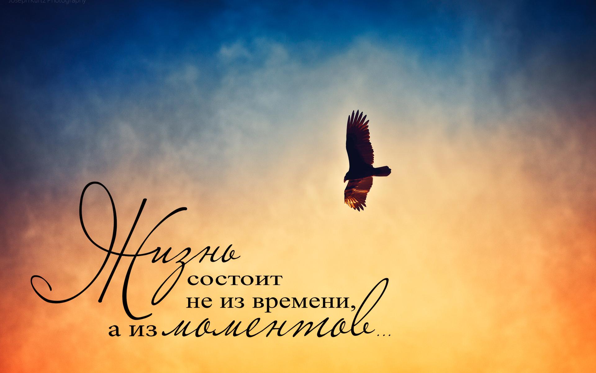 жизнь состоит не из времени, а из моментов