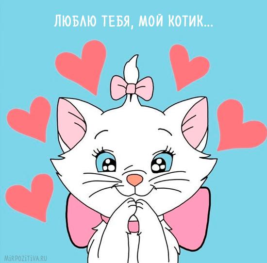 люблю тебя, мой котик