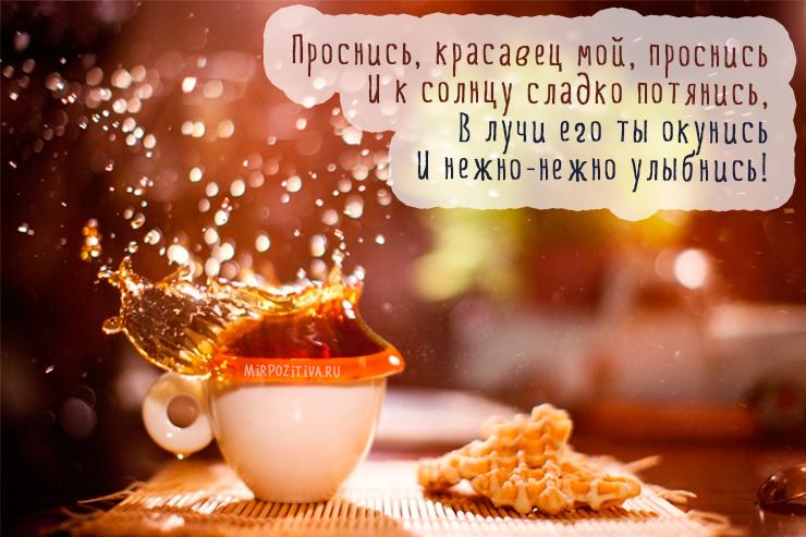 Проснись, красавец мой, проснись И к солнцу сладко потянись, В лучи его ты окунись И нежно-нежно улыбнись!