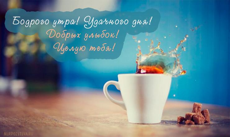 Бодрого утра! Удачного дня! Добрых улыбок! Целую тебя!