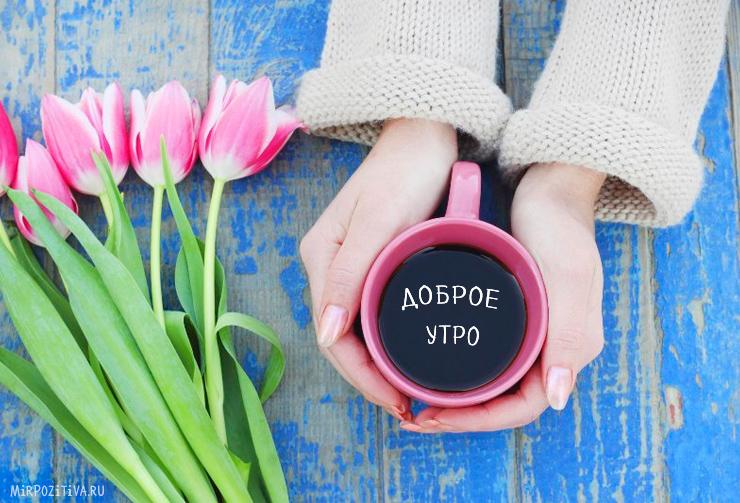 чашка в руке и цветы