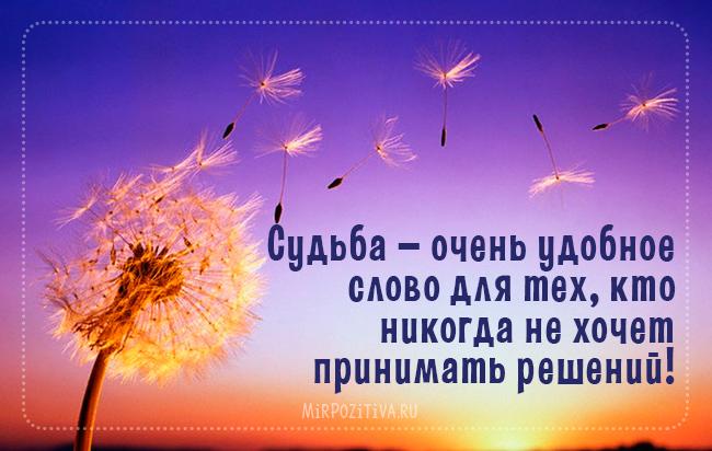 Судьба — очень удобное слово для тех, кто никогда не хочет принимать решений