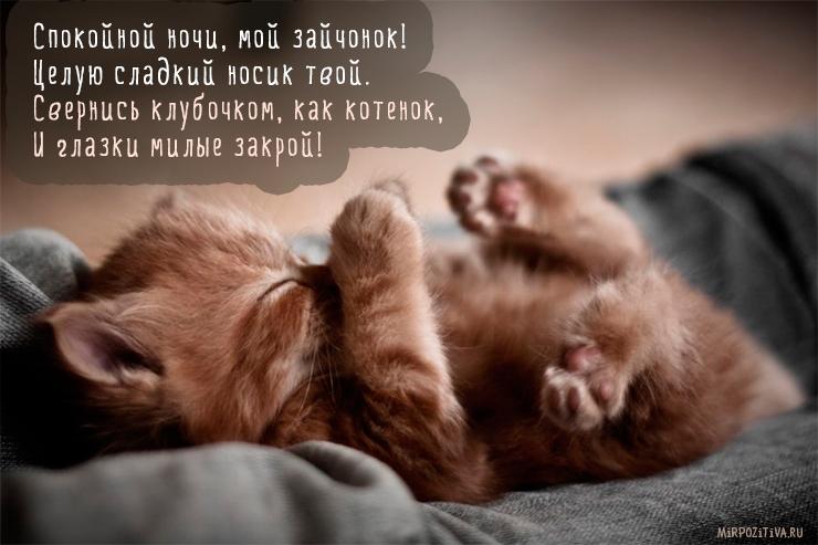 Спокойной ночи, мой зайчонок! Целую сладкий носик твой. Свернись клубочком, как котенок, И глазки милые закрой