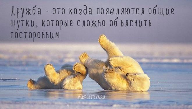 Дружба - это когда появляются общие шутки, которые сложно объяснить посторонним