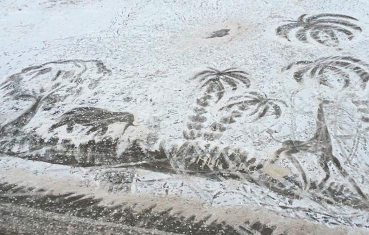 пальмы жираф и слон рисунок на снегу