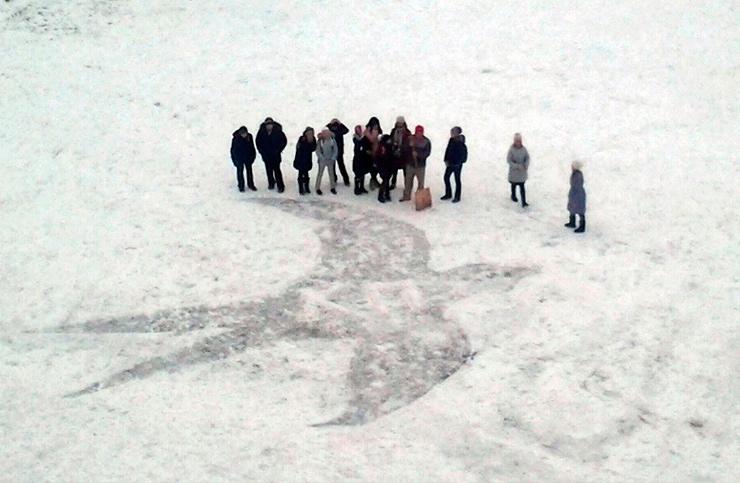 ласточка рисунок на снегу