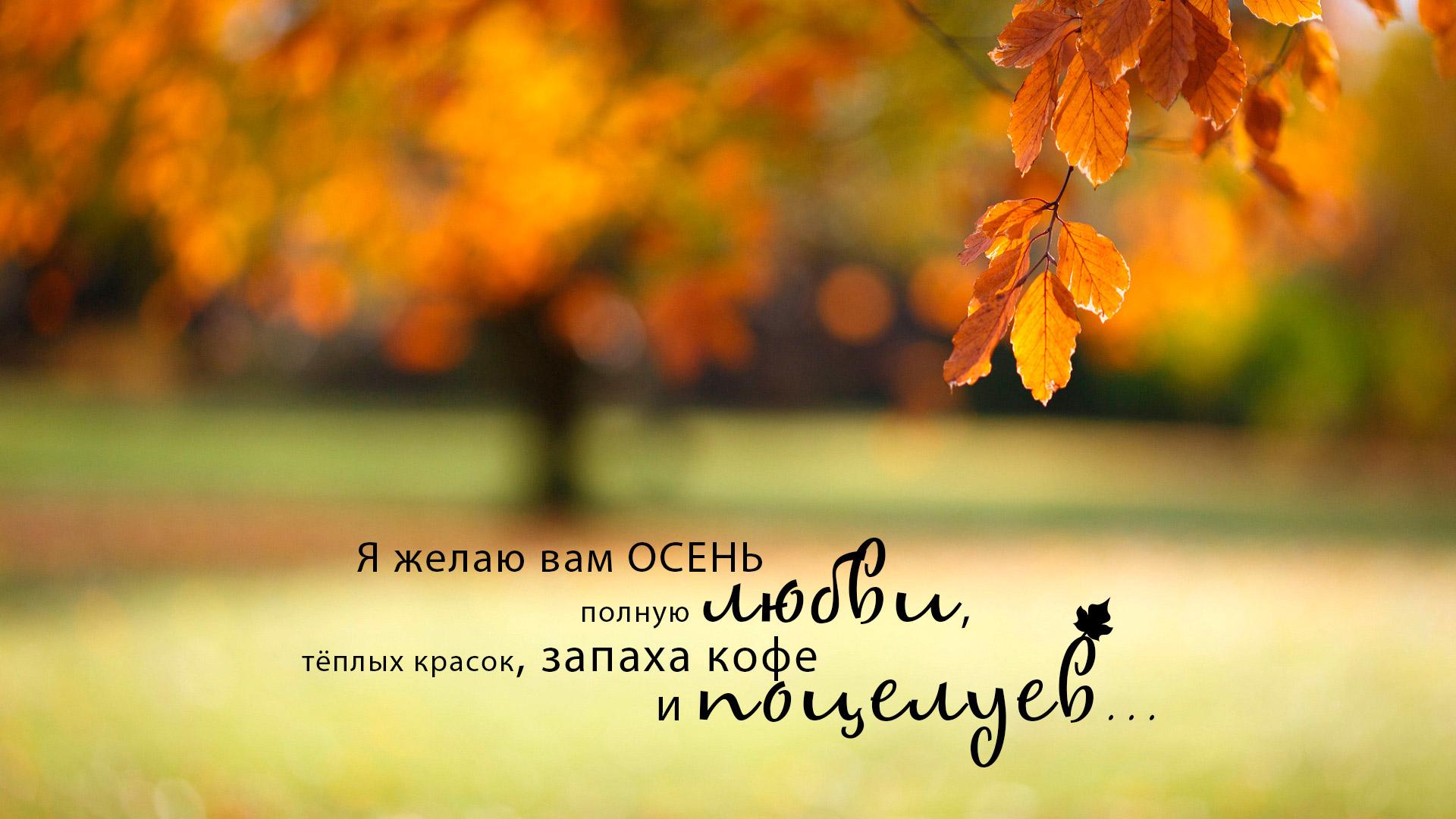 Я желаю вам осень полную любви, тёплых красок, запаха кофе и поцелуев...