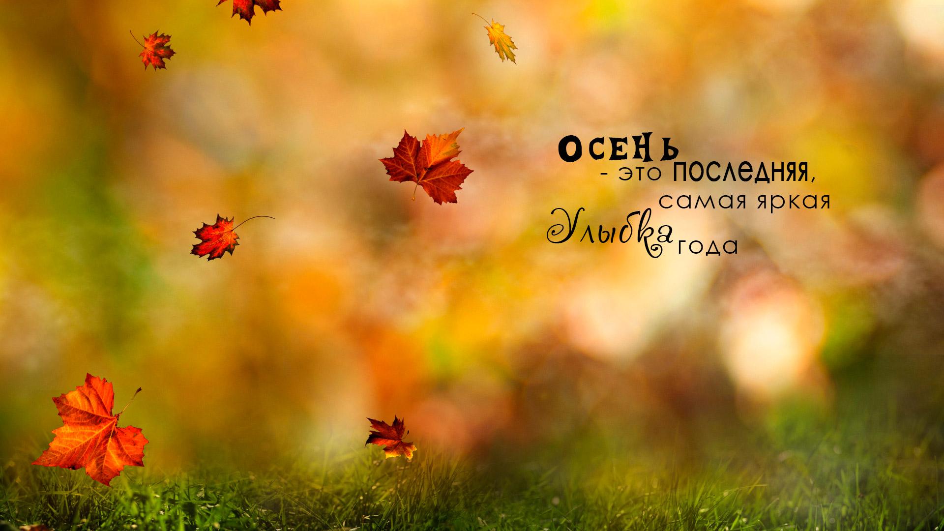 Осень - это последняя самая яркая Улыбка года