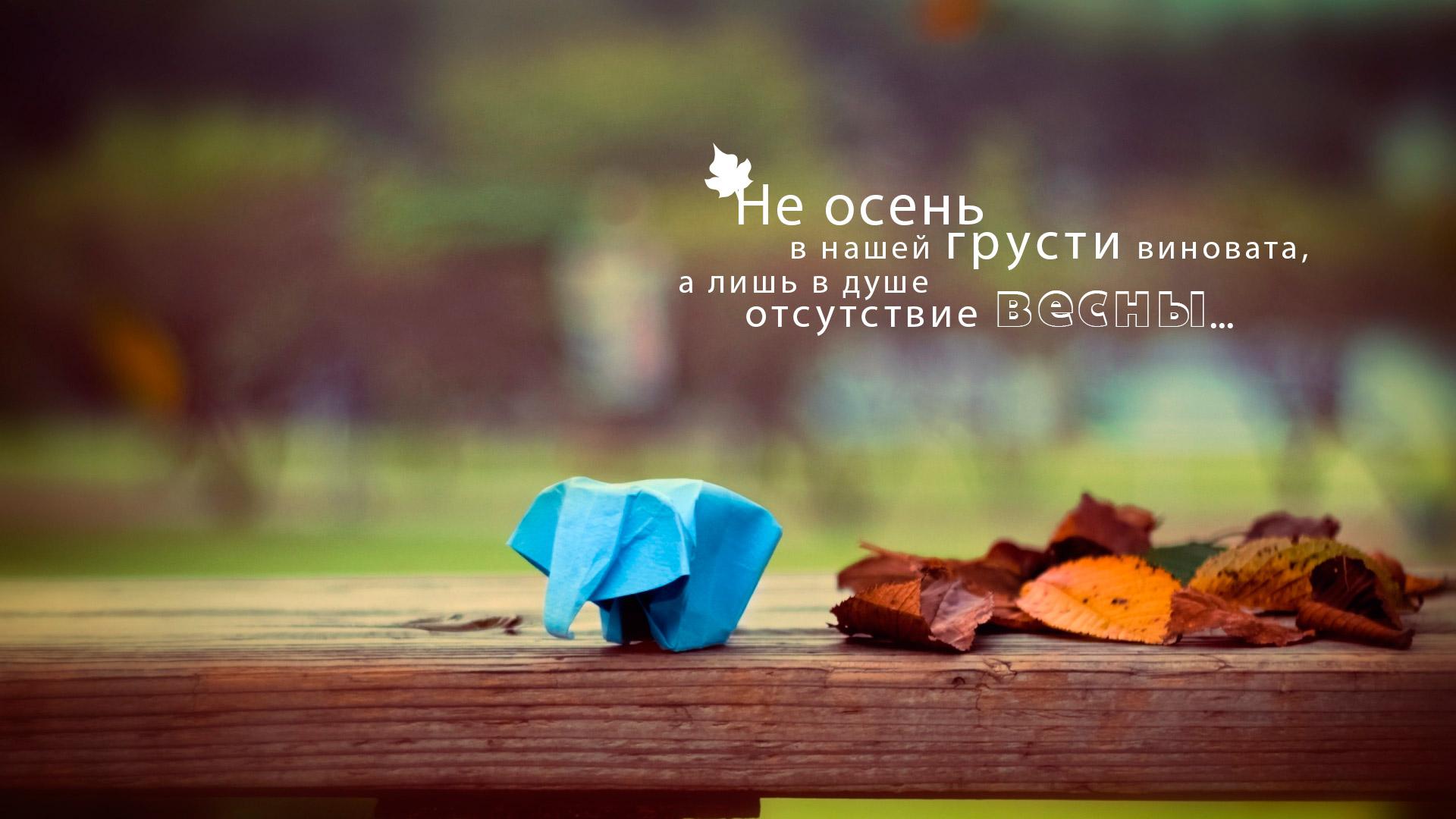слоник оригами на лавочке с листьями - не осень в нашей грусти виновата