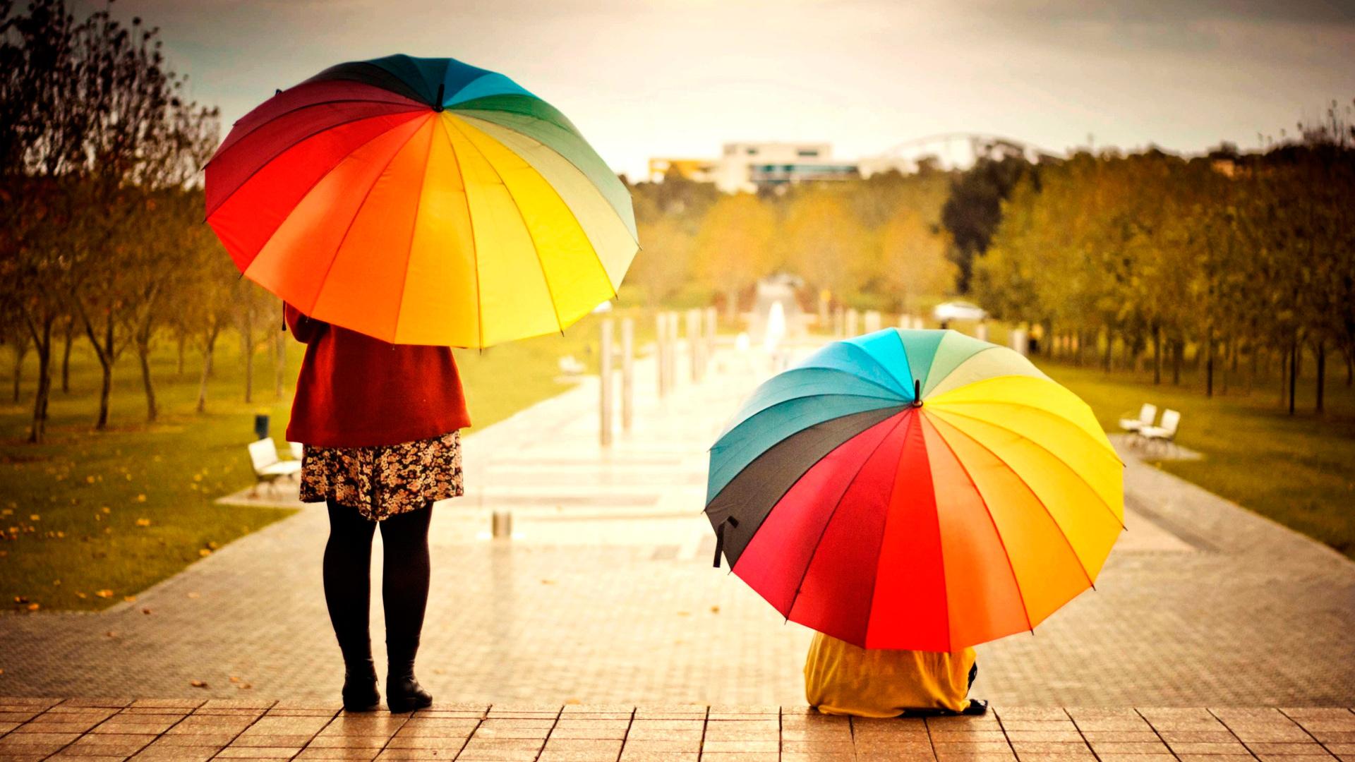 два ярких зонта