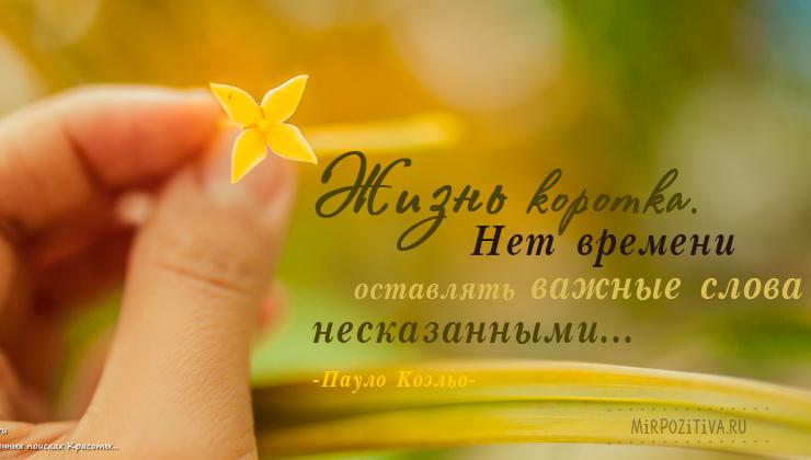 маленький желтый цветочек в руках