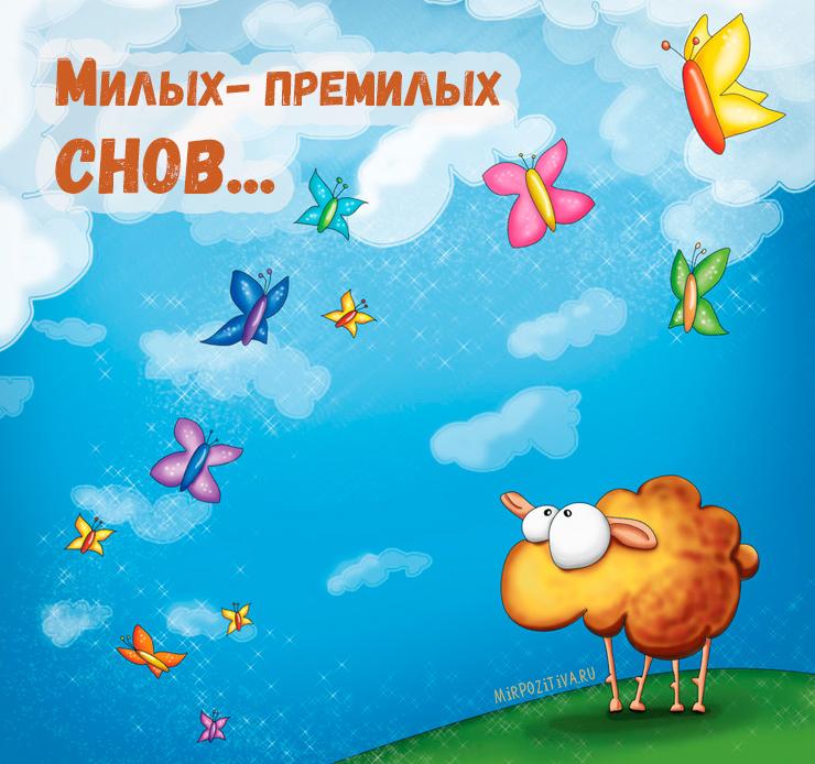 овечка милых - премилых снов..