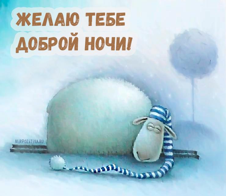 Желаю тебе доброй ночи!