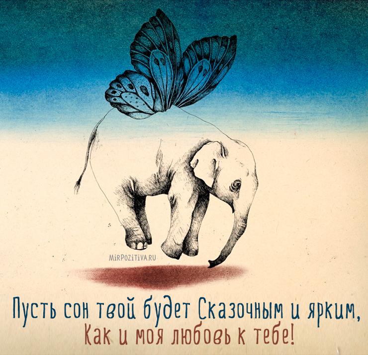 Пусть сон твой будет Сказочным и ярким, Как и моя любовь к тебе.