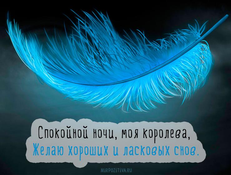 Спокойной ночи, моя королева, Желаю хороших и ласковых снов