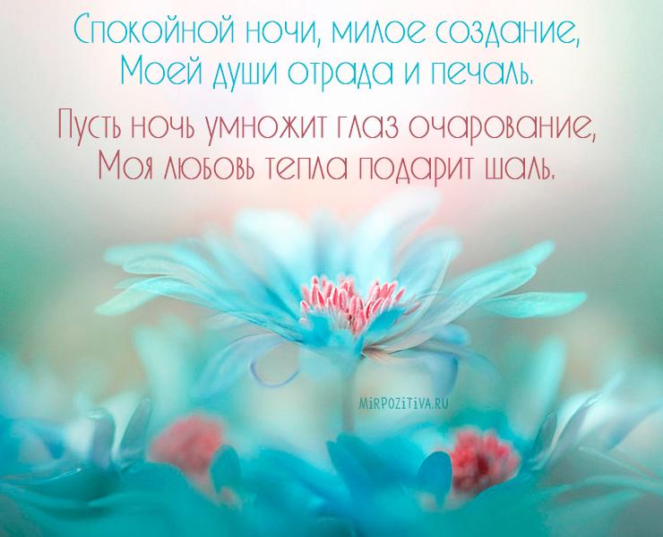 нежный цветок и пожелание