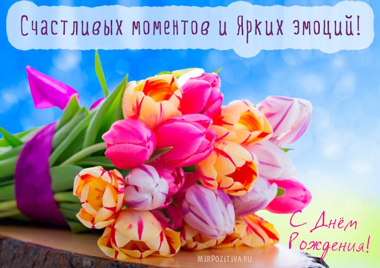 красивый букет тюльпанов - счастливых моментов