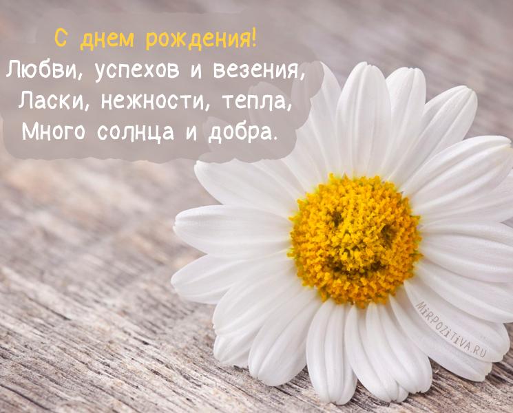 С днем рождения! Любви, успехов и везения, Ласки, нежности, тепла, Много солнца и добра.