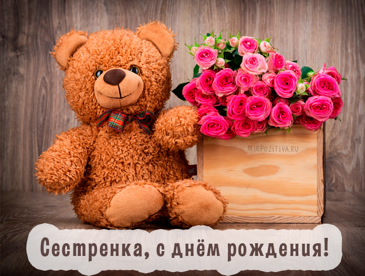 мягкий мишка и цветы