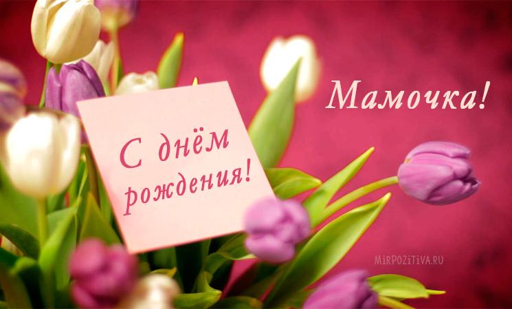 тюльпаны Мамочка с днем рождения