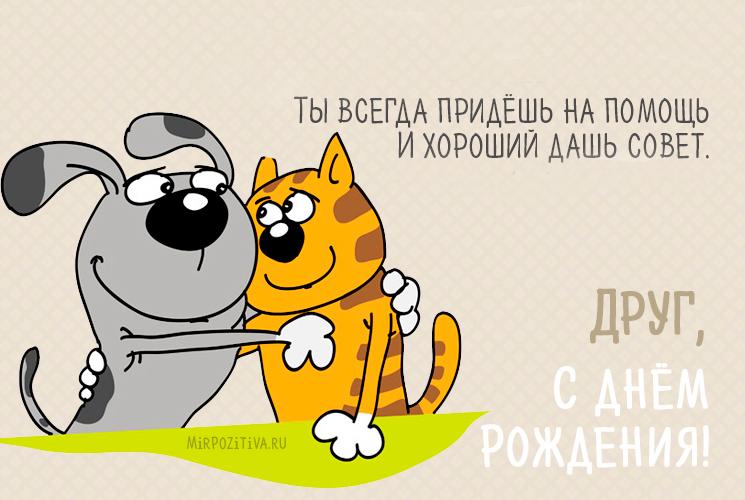 кот с собакой обнимаются картинка