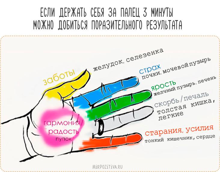 пальцы рук