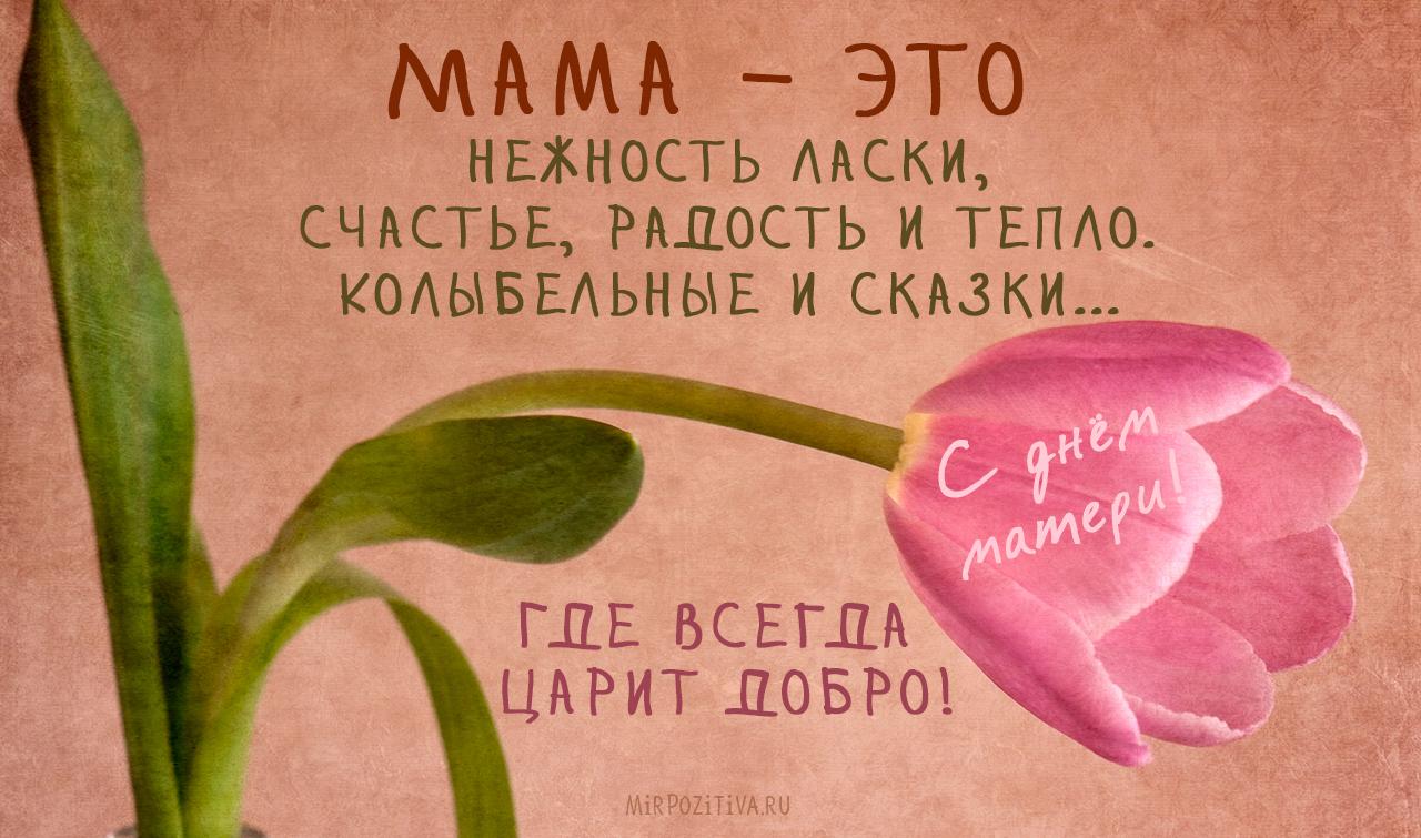 Мама – это нежность ласки, Счастье, радость и тепло.