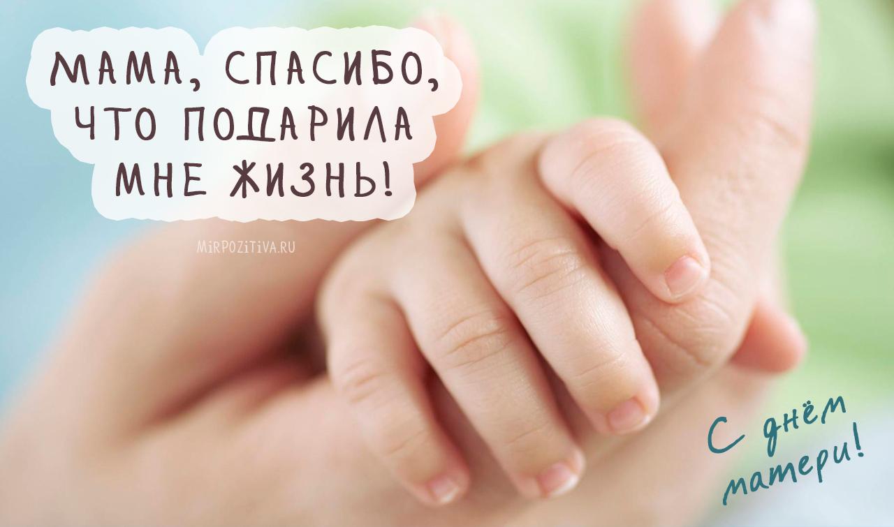 Мама, спасибо, что подарила мне жизнь!