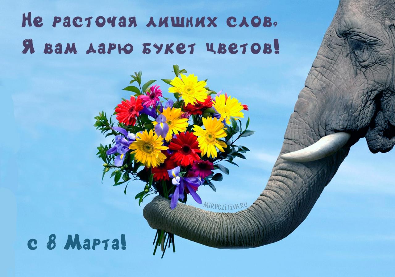 Не расточая лишних слов, Я вам дарю букет цветов!