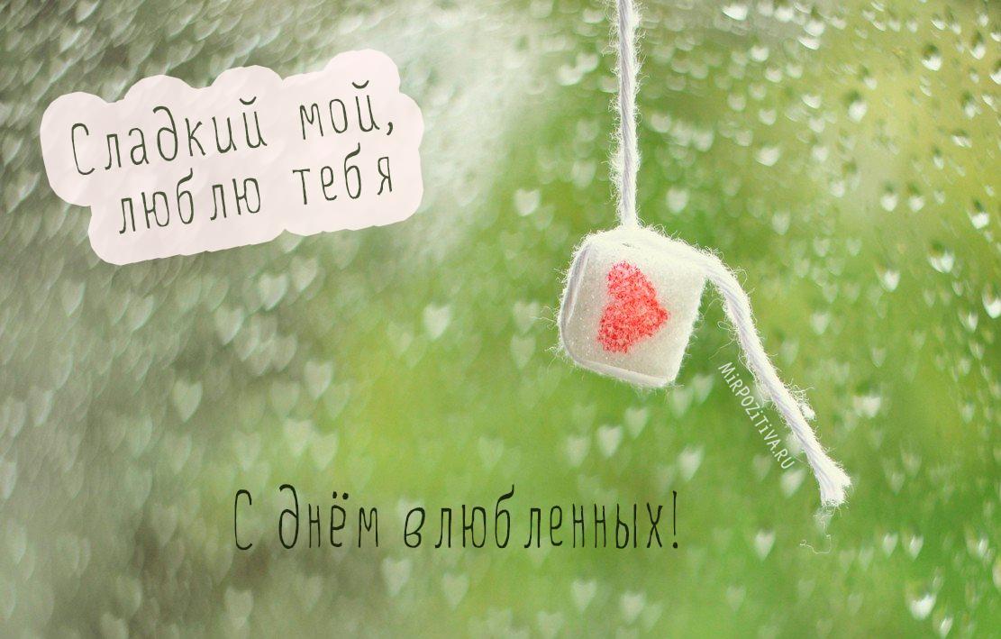 Сладкий мой, люблю тебя, сахарок