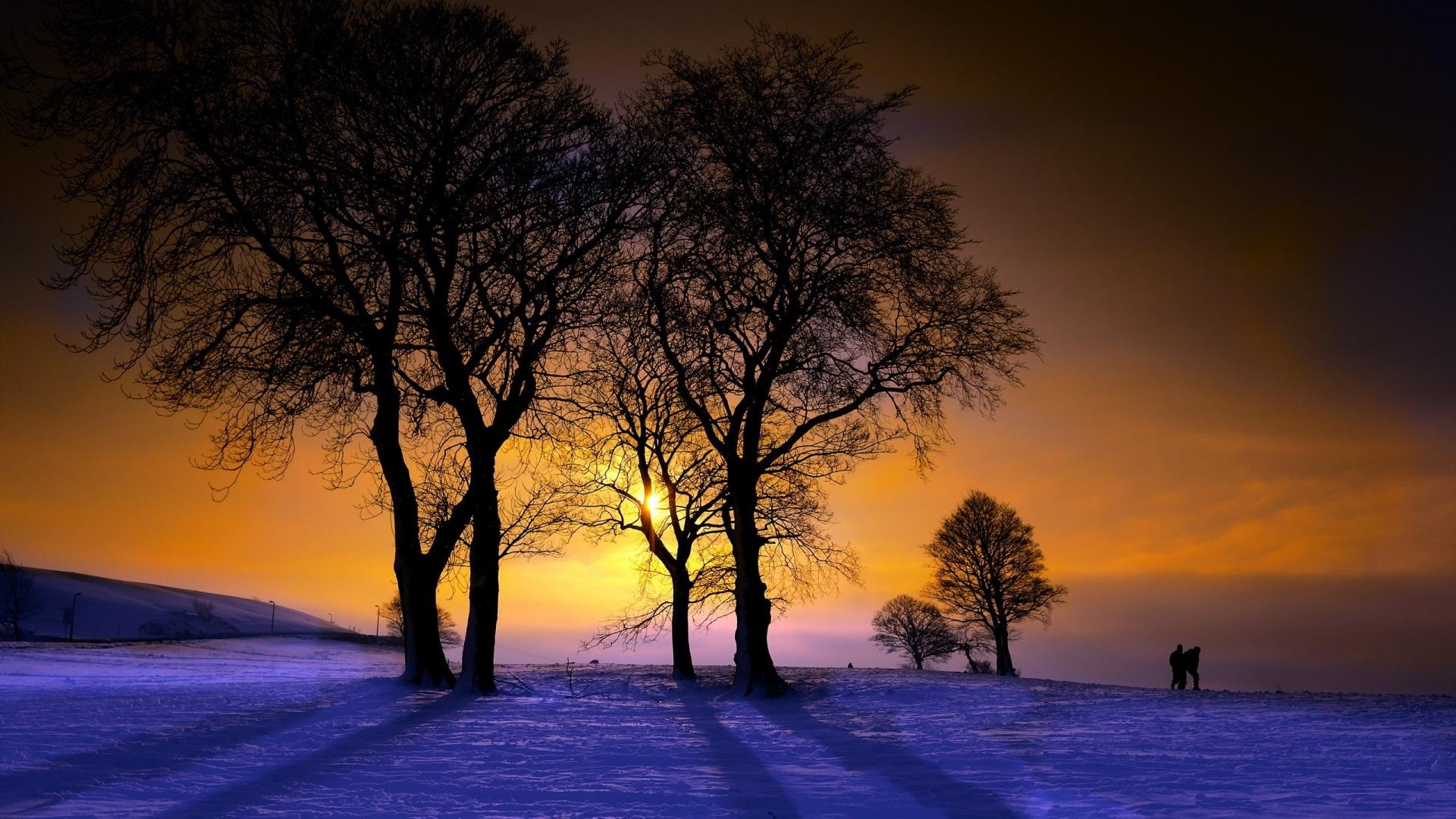 закат зима деревья пейзаж