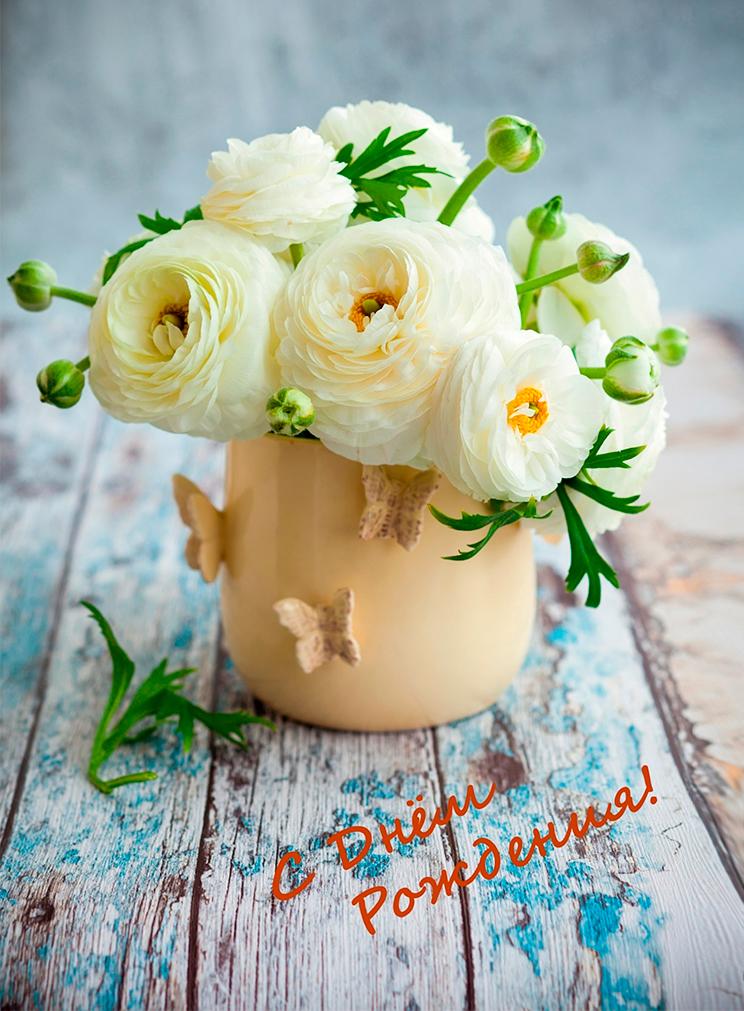 нежные цветы в день рождения