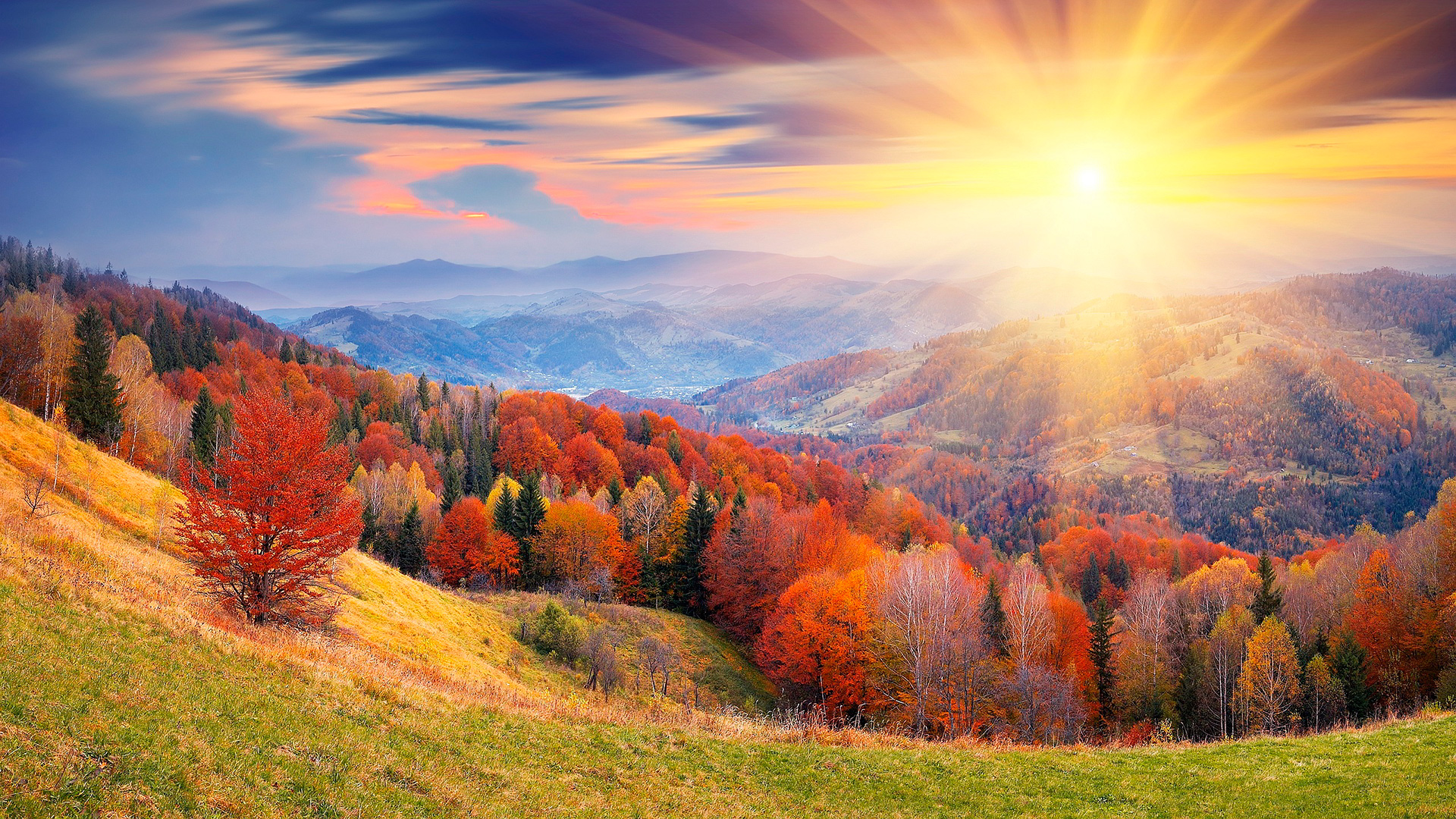 осень панорама