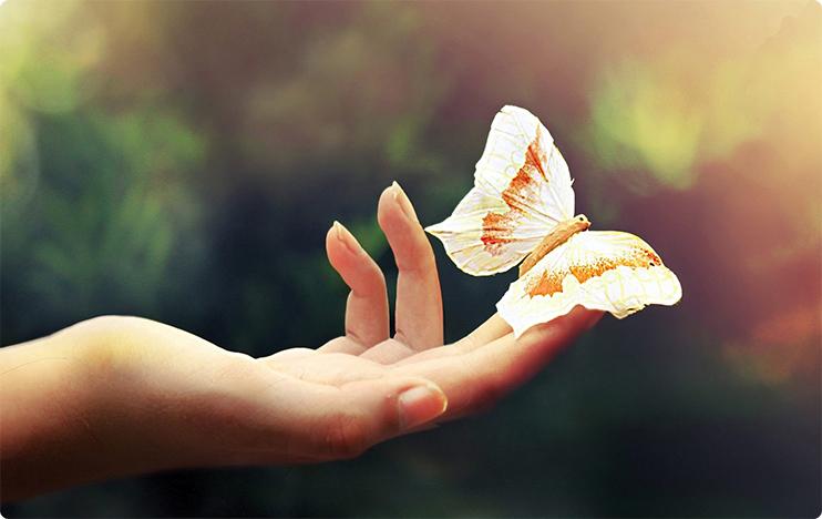 рука бабочка