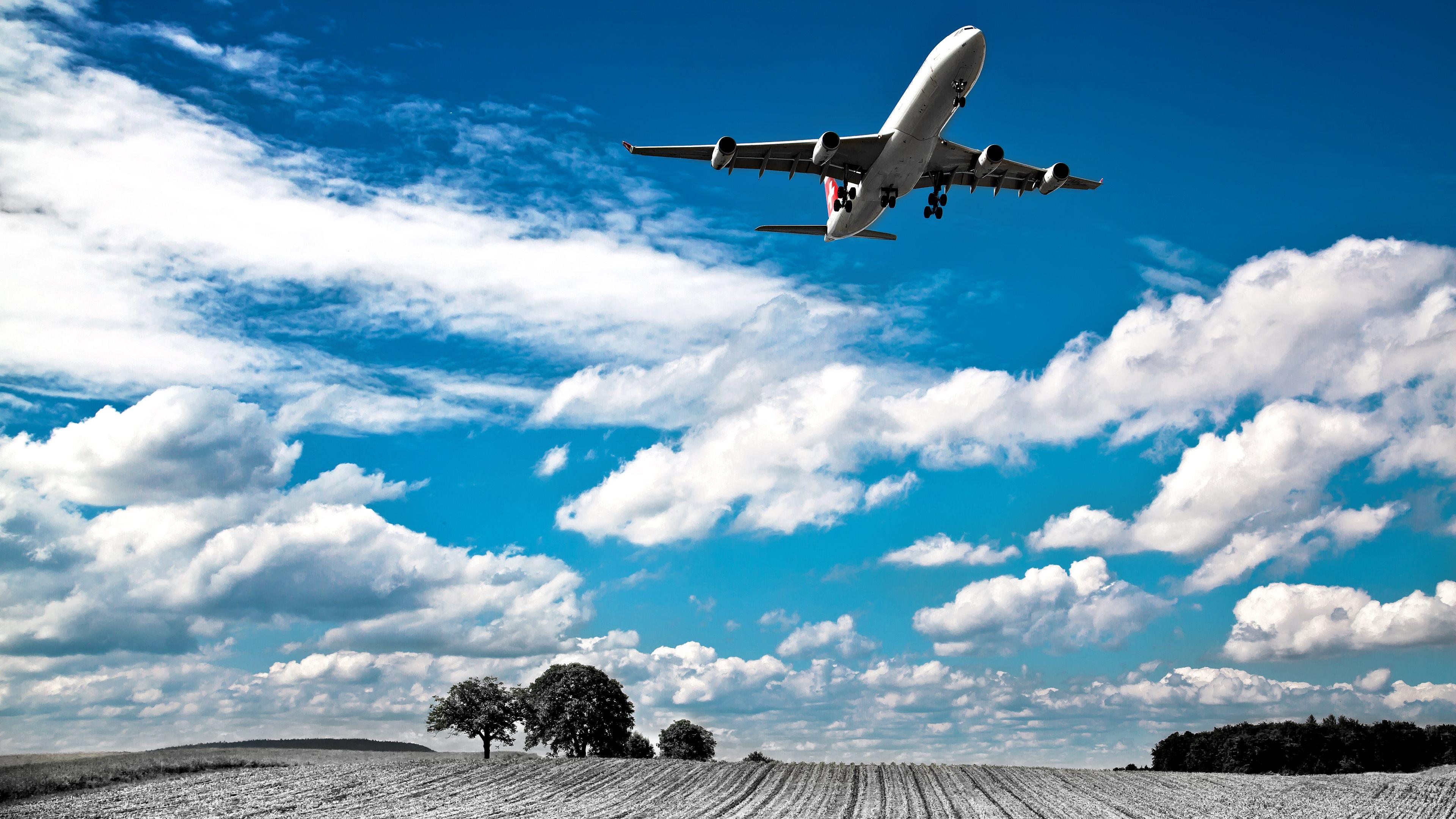 самолет над полем