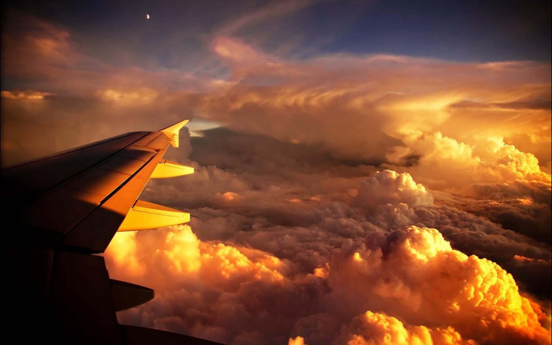 крыло закатные облака