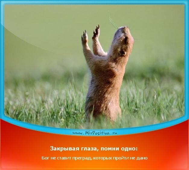 Позитивчик дня: Закрывая глаза, помни одно: Бог не ставит преград, которых пройти не дано