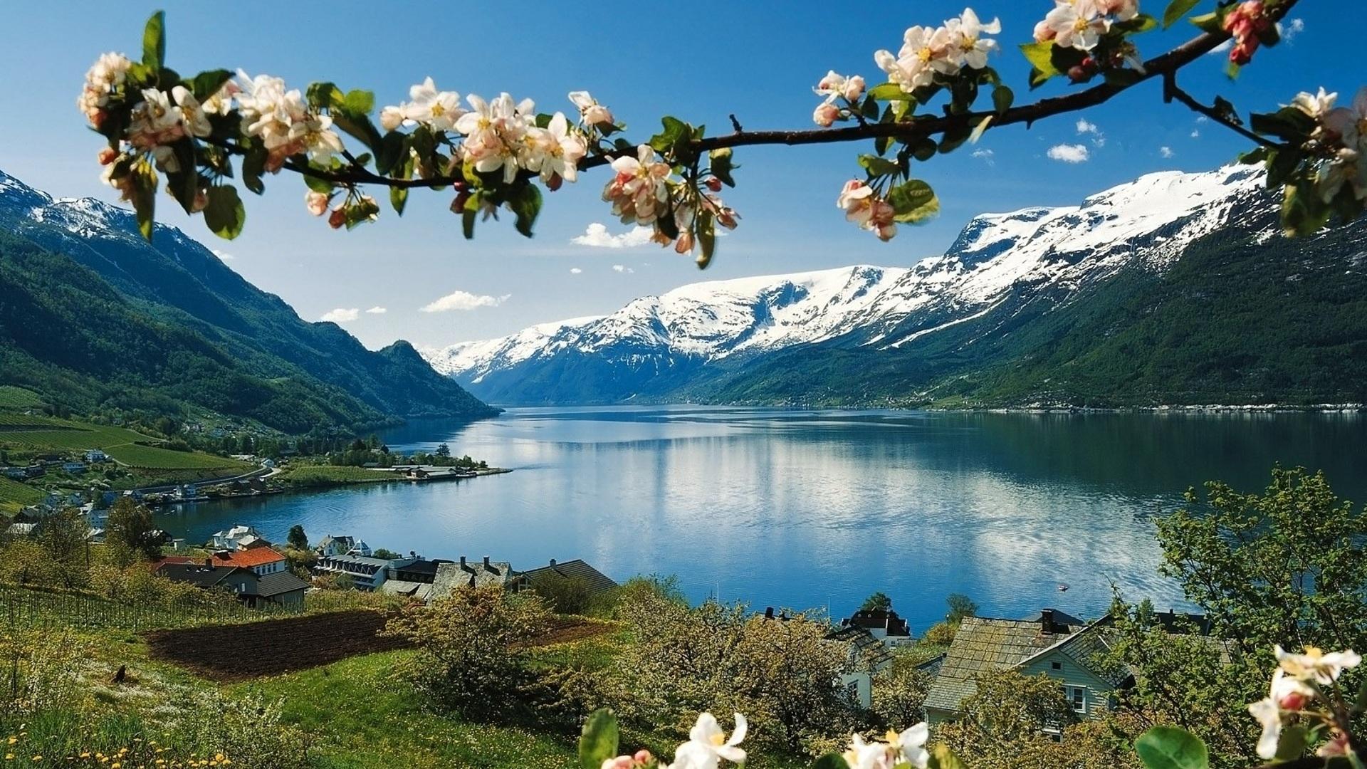 весна в горах река