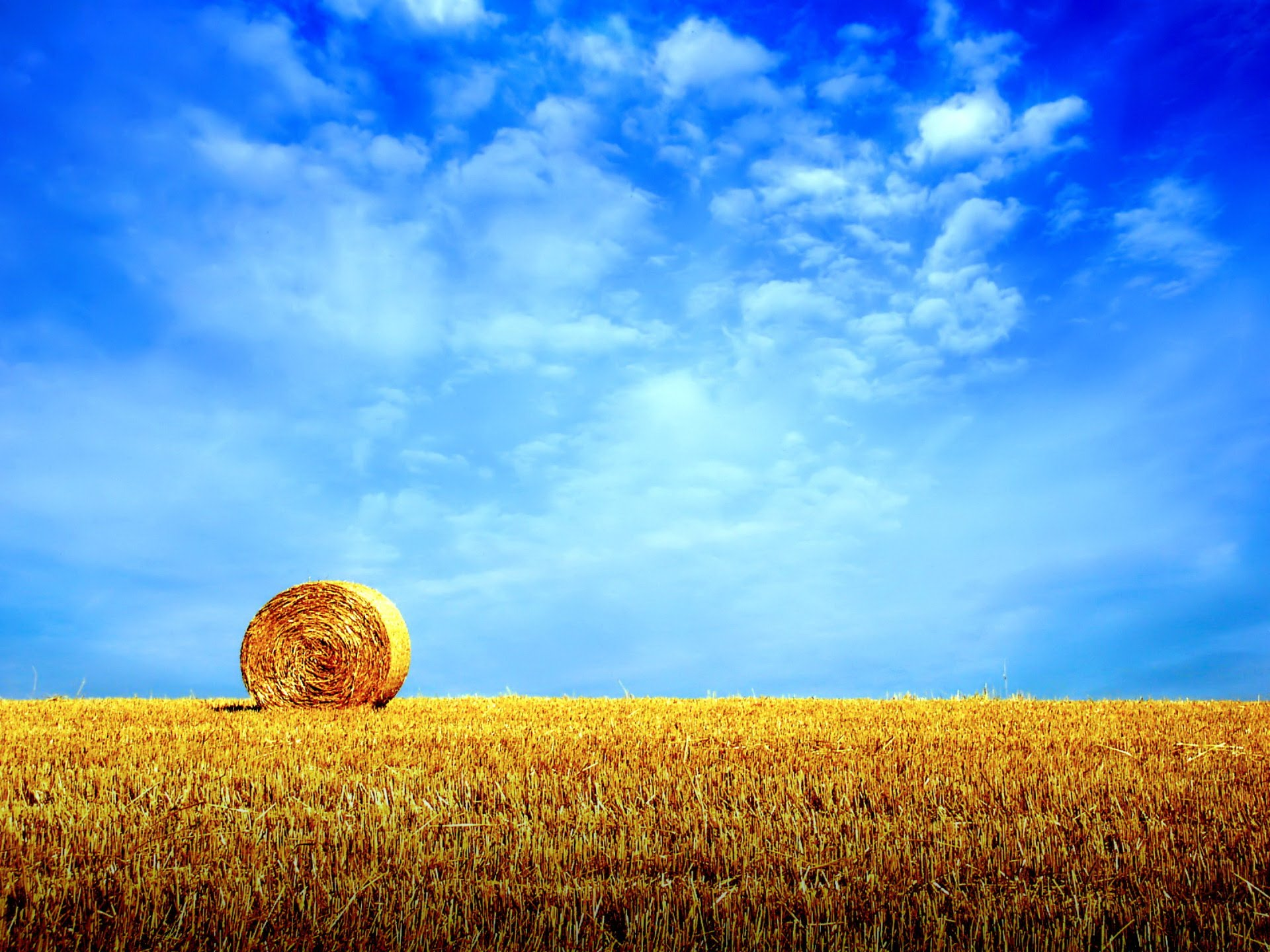 поле стог сена
