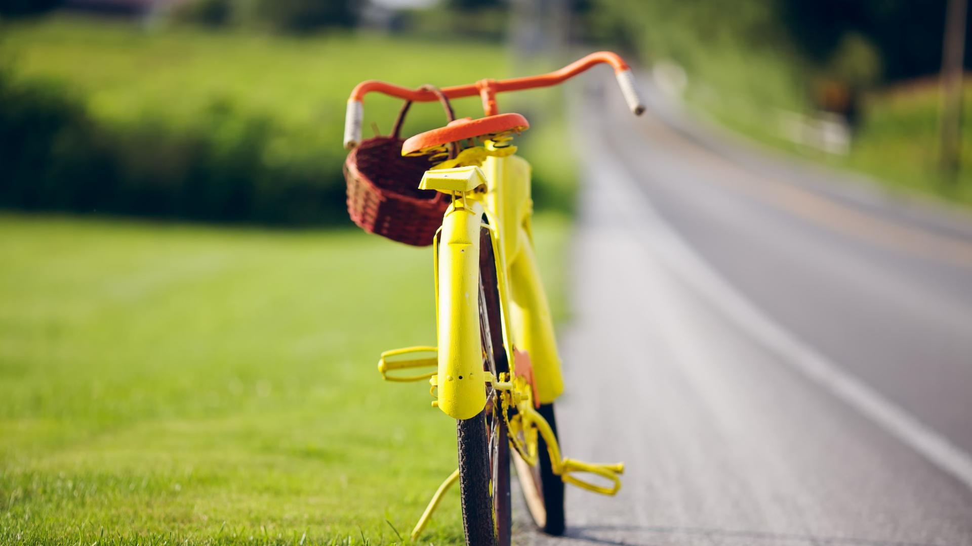 велосипед дорога летняя