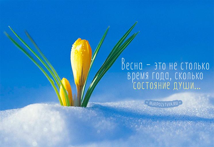 Весна - это не столько время года, сколько состояние души...