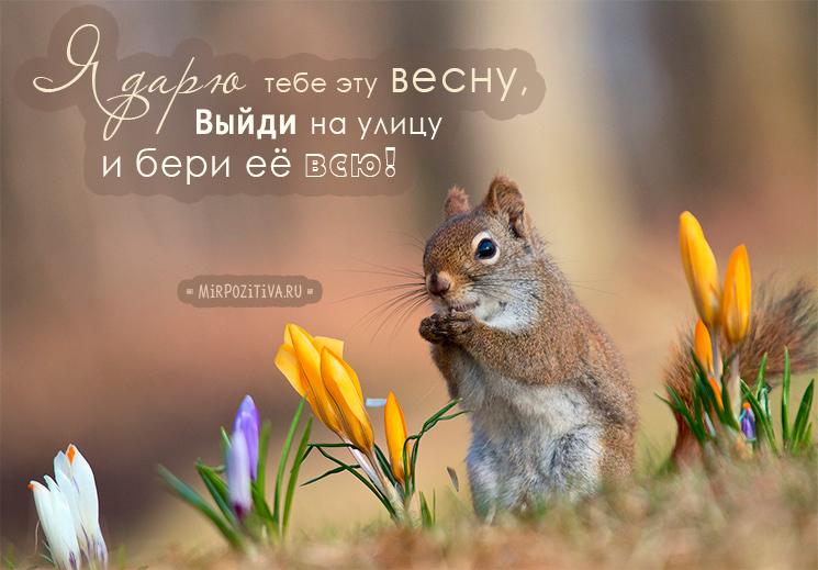 Я дарю тебе эту весну! Выйди на улицу и бери её всю!