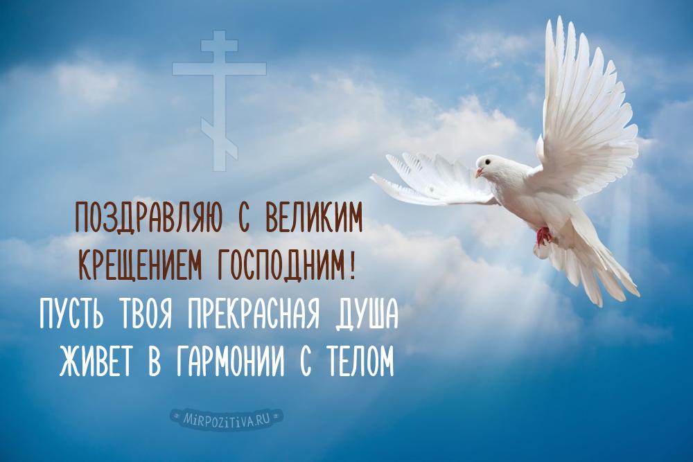Поздравляю с великим Крещением Господним! Пусть твоя прекрасная душа живет в гармонии с телом