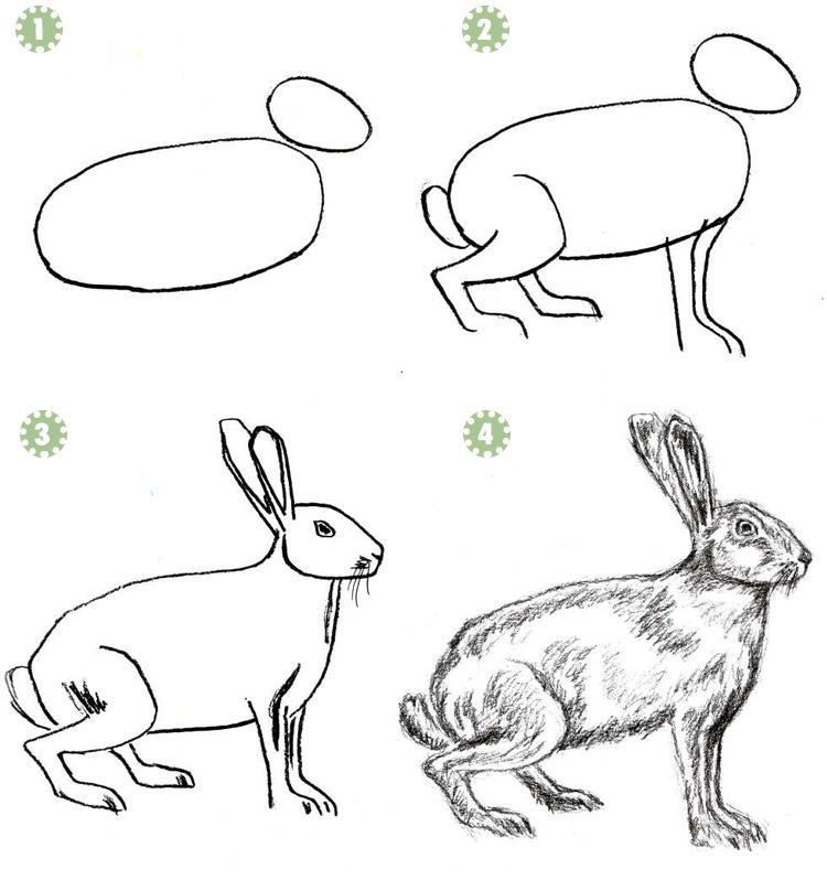 пушистый кролик рисунок
