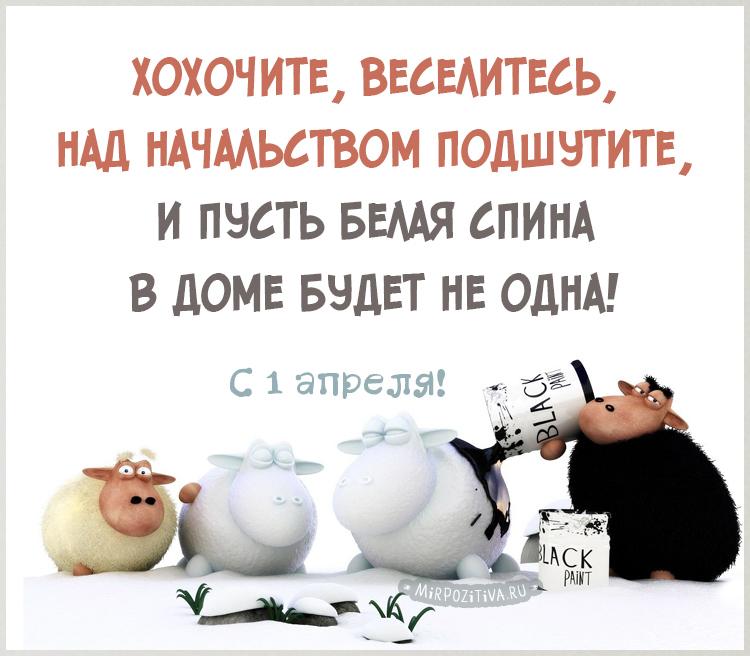 овечки Хохочите, веселитесь, над начальством подшутите, И пусть белая спина В доме будет не одна!