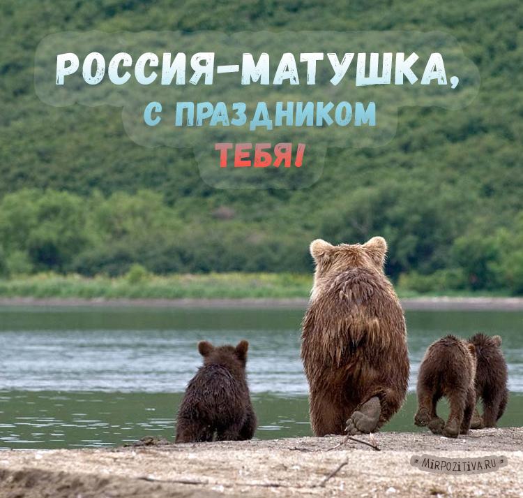 мишки, медведи. Россия-матушка, с праздником тебя!