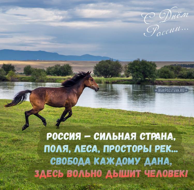 Россия — сильная страна, Поля, леса, просторы рек. Свобода каждому дана, Здесь вольно дышит человек!
